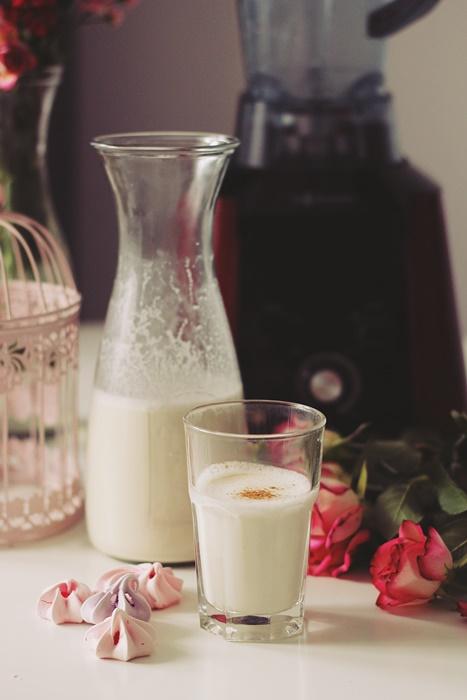 lapte de caju, blender g21